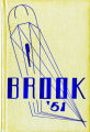 The Brook 1951